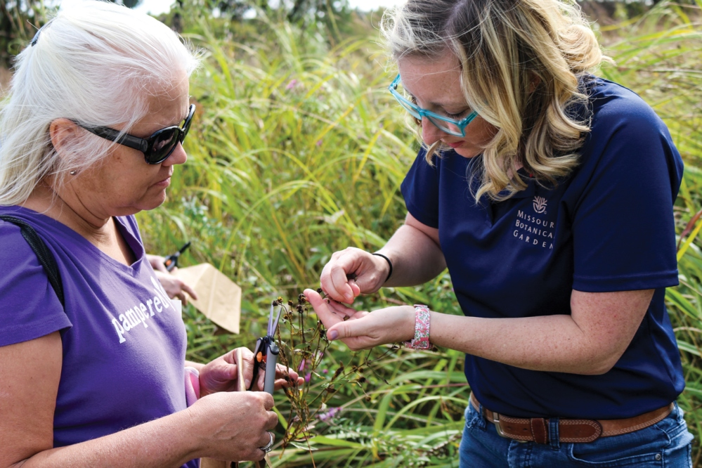 shaw-nature-reserve-seed-collecting-class_robin-powell-40