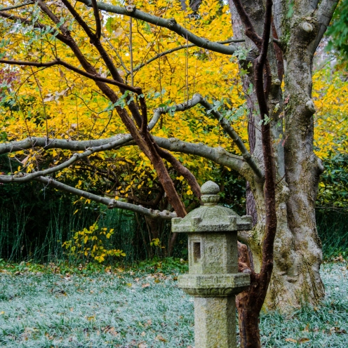 Roji Lantern near the Sacred Lotus Overlook (Photo: Lisa DeLorenzo Hager)