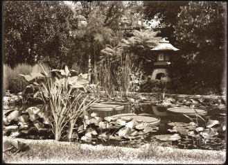 One of the Yukimi Lanterns at the home of Garden trustee Leonard Matthews in 1910.