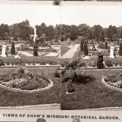'View of Shaw's Missouri Botanical Garden' (1890)