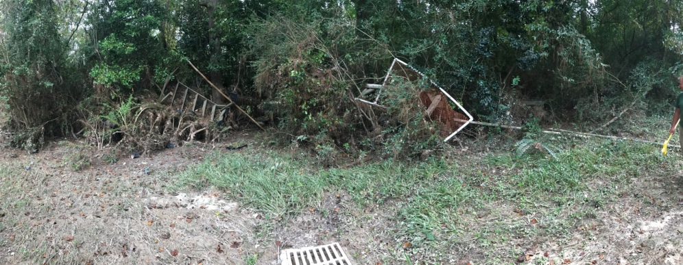 Widespread damage from hurricane winds and flooding. Photo by Jennifer Smock.
