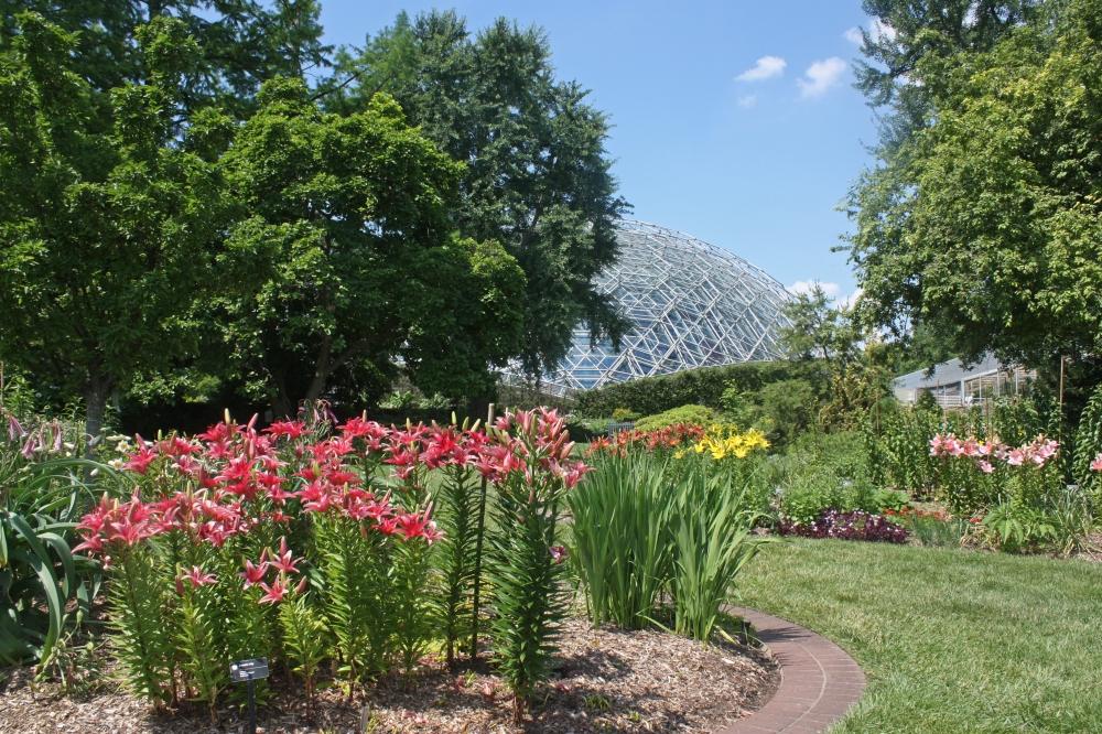 Bulb Garden_Bethany Ottens