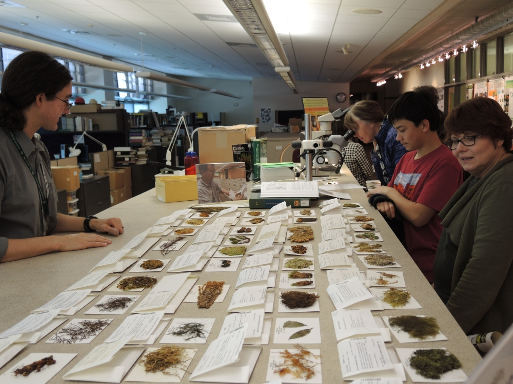 The Bryophyte (Moss) Herbarium exhibit.