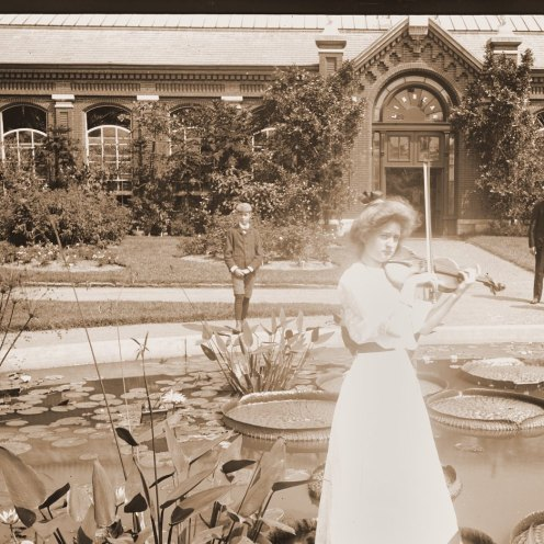 A woman poses with a violin on a Victoria lily pad in the 1890s.