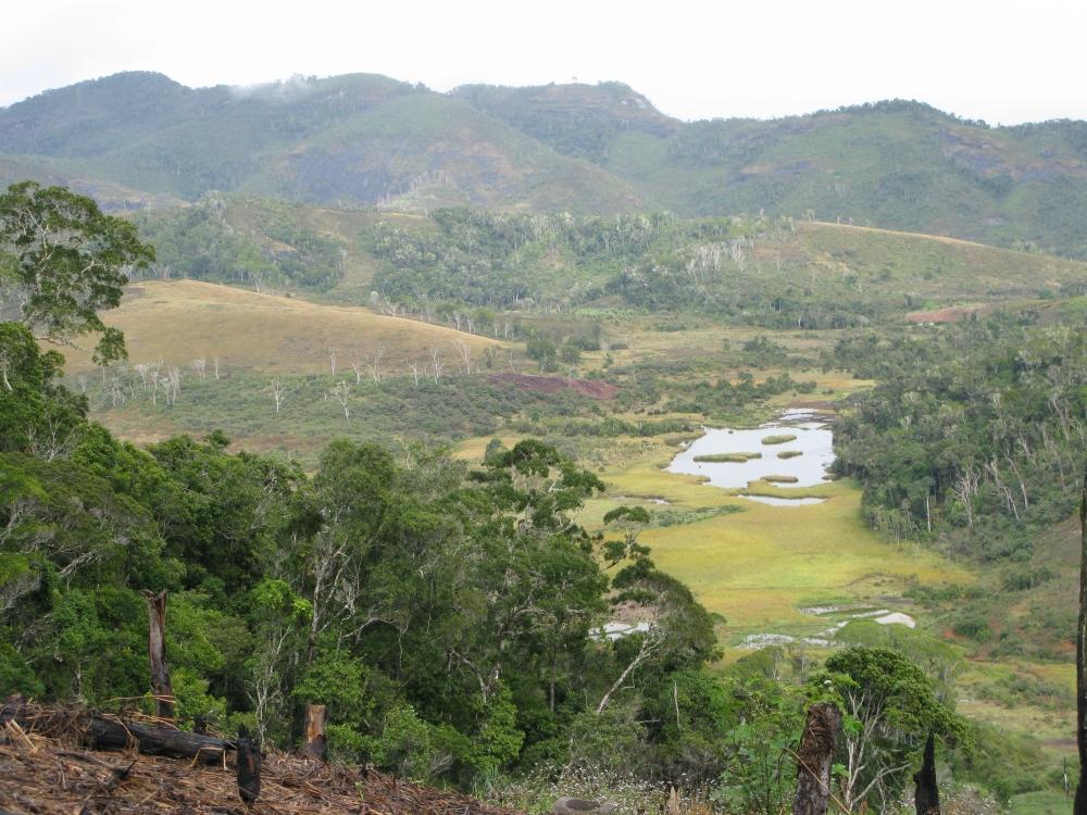 Madagascar Midungu landscape clearing0166