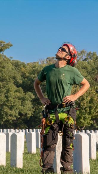 Dave Gunn of the Missouri Botanical Garden surveys a tree before climbing.