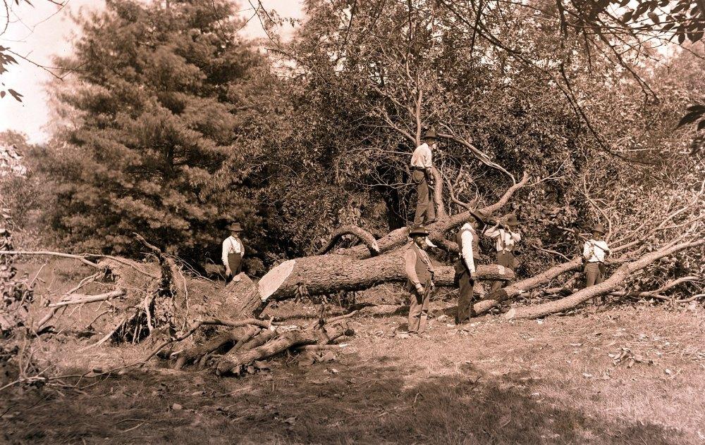 1896 Tornado