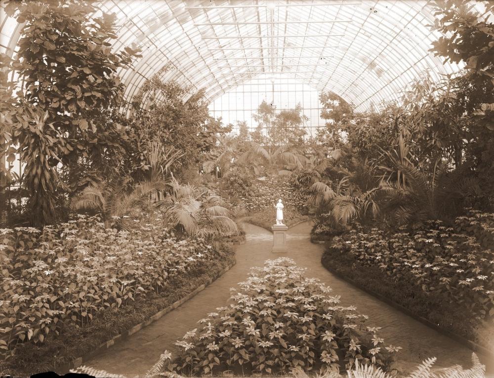 Poinsettia Show 1920